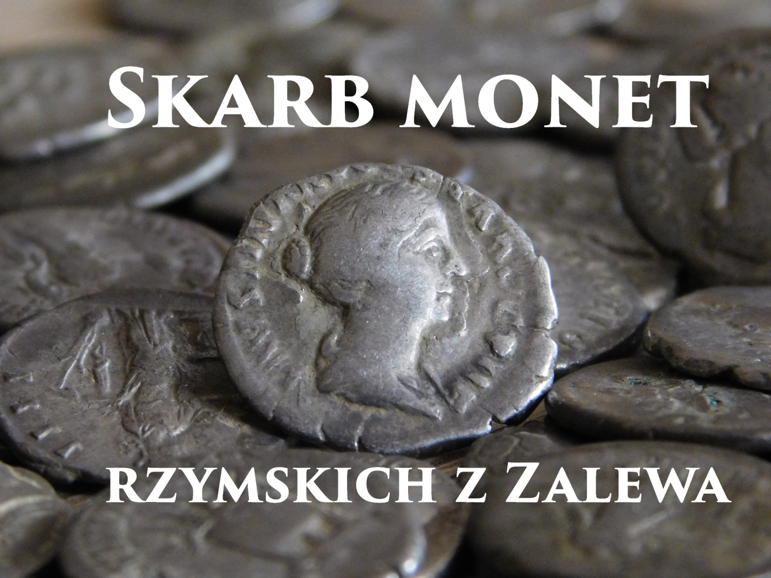 skarb monet z zaklewa- you tobe